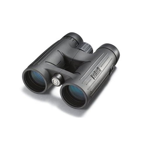 Fernglas Bushnell Excursion EX 8x42
